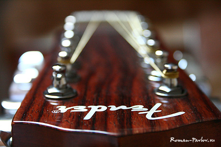 Acoustic Guitar Fender CD 160 SE 12 Nat